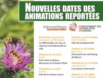 Affiche report