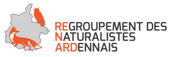 LOGO RenardAssos FINAL